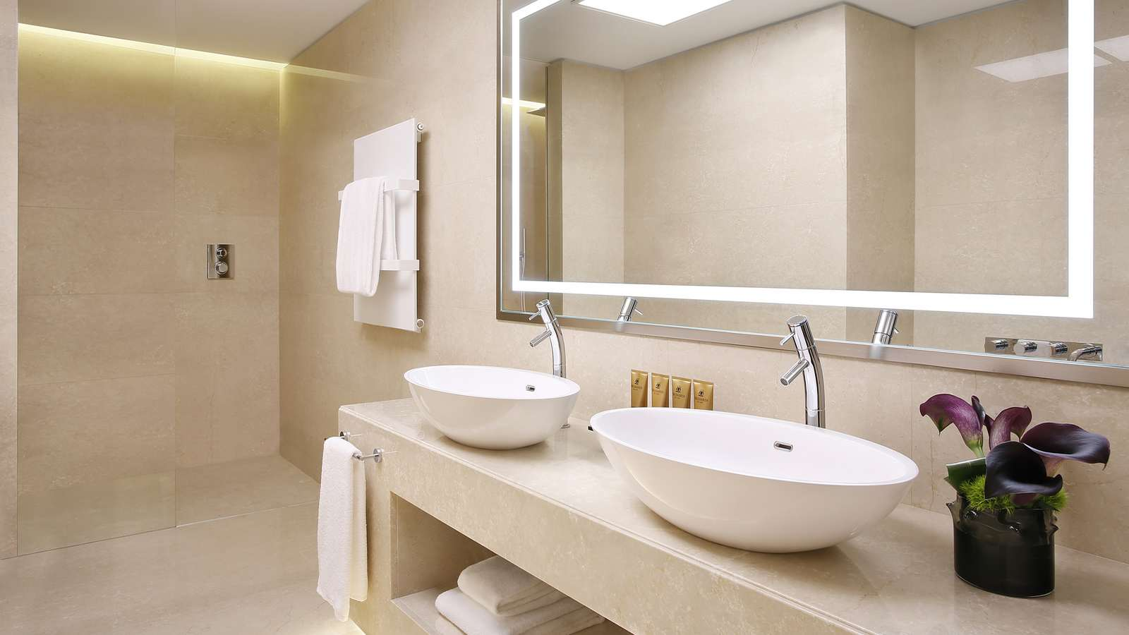 Executive Suite Bagno